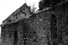 Through the Ruined Window (JamieHaugh) Tags: tintern monmouthshire wales uk gb great britain sony a6000 alpha zeiss outdoors black white bw monochrome ruins church st marys building architecture forgotten ghosts paranormal fire undergrowth mysterious spooky window door cross abandoned ilce6000 trees light shadows ruined