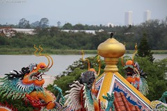 We want the bird (KENO Photography) Tags: dome bird hunting art artifacts asia buddhism carved china chinese colors dragon museum painting pattaya religion religious sala sculpture spiritual spirituality statue temple thailand tourism touristic travel visit worship animal
