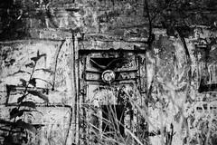 The Wall (Fotofabrik Itzehoe) Tags: itzehoe alsen planetalsen ruine lostplaces schleswigholstein holstein steinburg kreissteinburg grafitti analog analogue scan kleinbild