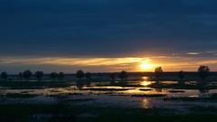 Another day, another sunset (pszcz9) Tags: polska poland przyroda nature natura parknarodowy ujściewarty nationalpark wartamouth zachódsłońca sunset pejzaż landscape woda water odbicie reflection słońce sun słońsk beautifulearth sony a77 mokradła wetlands