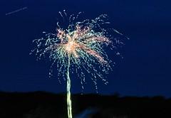 tűzijáték, fireworks, Feuerwerk (A. Meli) Tags: tűzijáték május május1 magyarország majális fireworks may may1 hungary feuerwerk mai mai1 ungarn