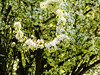I'm hooked (brooklandsspeedway) Tags: creamerypark lehighvalley lowermacungie alburtis