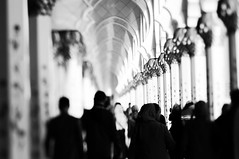 Sheikh Zayed Grand Mosque in Abu Dhabi III (Frau Koriander) Tags: abudhabi orient scheichzayidmoschee مسجدالشيخزايد masdschidaschschaichzayid sheikh zayed moschee sheikhzayed vae uae emirates vereinigtearabischeemirate unitedarabemirates asien asia details mosque white building gotteshaus religion architecture architektur nikond300s lensbaby lensbabycomposerpro lensbabycomposerproedge80 lensbabyedge80 edge80 80mm tiltshift tilt weis gold gülden golden light licht gebäude islam glaube belief faith sakral sakralbauten sacredbuildings sacred säulen edelsteine halbedelstein floral geschmückt ornamente people humans street personen