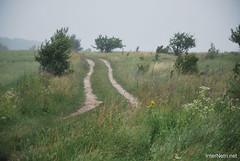 Волинське поле InterNetri Ukraine 776