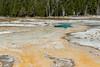 Yellowstone NP (sgplewka) Tags: uppergeyserbasin usa 2017 yellowstonenp urlaub yellowstonenationalpark wyoming us