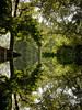 Reflecting the reflection (smir_001) Tags: green leaves mordenhallpark park water riverwandle may spring river london england british britain morden canoneos7d urban nature city landscape reflection abstract symmetry'collage'diptych