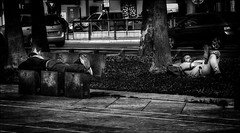 Au bout de la nuit.../ The end of the night... (vedebe) Tags: noiretblanc netb nb bw monochrome humain human homme people ville street rue city urbain urban