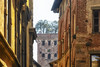 La rinascita (forastico) Tags: forastico d7100 lucca toscana torre torreguinigi guinigi