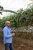 Murcia (javier_hdez) Tags: murcia lamanga marmenor lodos navegar gastronomía españa tomates