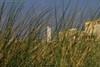 Noordwijk aan Zee (Noodles Photo) Tags: noordwijkaanzee vuurtoren leuchtturm lighthouse duinen dünen dunes dunesgras dünengras seasideresort seebad provinzsüdholland southholland zuidholland noordzee nordsee northsea niederlande netherlands nederland paysbas nl canoneos7d ef24105mmf4lisusm hotelvanoranje