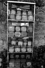 Dans les les jardins de l'abbaye de Villelongue (Philippe_28) Tags: aude 11 villelongue abbaye abbey monastère ruine france europe 24x36 argentique analogue camera photography film 135 bw nb