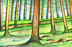 Forest Trees (drawingtutorials101.com) Tags: forest trees forests tree color pencils sketching pencil sketch sketches sketchs how draw drawing drawings colors coloring speed