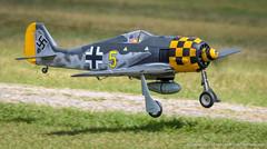 DSC_0806 (dwhart24) Tags: top gun paradise field 2018 lakeland florida fl frank tiano rc radio remote control airplane airshow aircraft david hart nikon