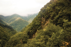Segavecchia (Ozma87) Tags: segavecchia rifugio pianaccio appennino corno alle scale parco regionale montagna toscoemiliano bosco foresta strada sentiero bologna alto reno terme discover alta quota natura