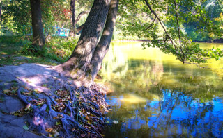 Quiet pond!