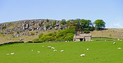 Eastby Crag & Field Barn (wontolla1 (Septuagenarian)) Tags: yorkshire dales eastby embsay crag rocks outcrop field barn landscape pansonic g3 lumix panasoniclumix45200mm wednesdaywalk trees skyline derelict empty abandoned unused