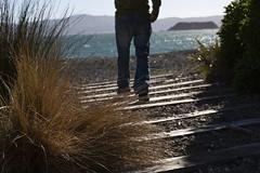 Loving the beach time (imajane) Tags: mg7747lovingthebeachtime lines eastbourne newzealand frank