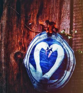 ○● Con el amor flotamos como luces suspendidas en el cielo, nos quedamos un largo rato ahí. Luego poco a poco o a veces de golpe vamos descendiendo al suelo para tener que sembrar las estrellas recolectadas de arriba, tarda tiempo , se necesita esfuerzo ,
