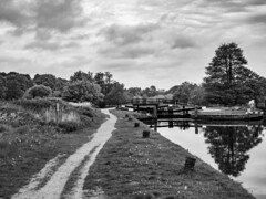 Wey St Catherines to Broadford-E5120255-Edit (tony.rummery) Tags: blackandwhite canal em10 lock mft microfourthirds omd olympus path reflections riverwey stcatherines tree