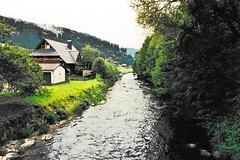 Germany - river in the Black Forest (stevelamb007) Tags: germany stevelamb 1994 river landscape rural