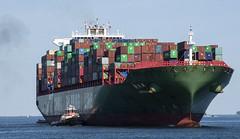 Ship and Tug (PAJ880) Tags: tug vincent b tibbetts btt container ship xin fe zhou boston harbor ma