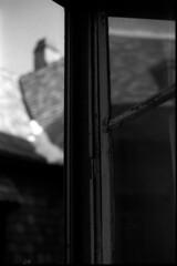 Livre ouvert, soir d'hiver (Rachelnazou) Tags: caffenol blackwhite minolta film fomapan analog argentique