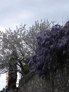 ** Saint-Paul-de-Vence...le lumineux...** -18
