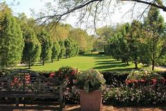 Looking across the lawn (D. C. Wilson) Tags: flower garden park grass field outdoor tree sun