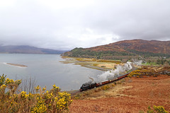 1264 - Attadale (Andrew Edkins) Tags: 1264 b1class attadale lochcarron kyleoflochalsh uksteam thegreatbritainxi railwayphotography travel trip light steamtrain geotagged canon railtour excursion lner 460 april 2018 spring