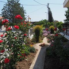 (Giannis Giannakitsas) Tags: greece grece griechenland viotia βοιωτια ορχομενοσ αγιοσ σπυριδωνασ βρανεζι