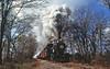 Showtime (craigsanders429) Tags: littleriverrailroad steamlocomotives steamtrains steamexcursions steamtrain littleriverrailroadno110 michigan michiganrailroads