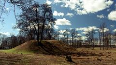 Borre Mound Cemetery (Sigurd R) Tags: baretrees barrow bluesky borre borrehaugene cemetery fornminne gravhaug gravhauger historicalsite history ironage mound norge norway polarizer spring sun trees vestfold viking no