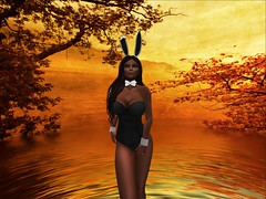 playboy bunny 2 maitreya_001 (mallorygates) Tags: secondlife sl character avatar dressed covered nonnude fashion pics avi clothed costumes rp roleplay holidays xmas christmas stpatricksday wimter cartoons tv characters lingerie harnesses lace leather undies nightwear panties bra