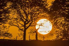 Sunset, Billinge, Merseyside (ianbonnell) Tags: sunset billinge merseyside sthelens wigan lancashire