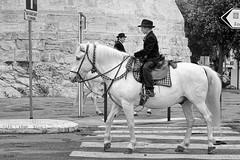 Jeune-Gardian-esayant-la-voiture-du-futur (RS...) Tags: arles cheval chevaldecamargue rue street noiretblanc blackandwhite d800