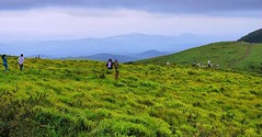 People milling around the hills. (Bhuvan N) Tags: meadow grassland pasture path grass sky natural blue beautiful cloudy clouds landscape landscapes mountains hill gopalswamy betta travel india karnataka indian people lovely landscapephotography