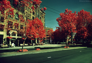 Kodak Infrared - Seattle - Washington State