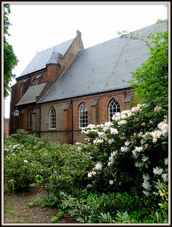 Church with Rhododendron, The Netherlands