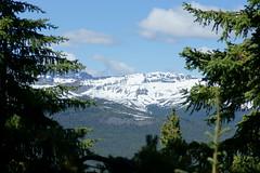 OpalHiills00030 (jahNorr) Tags: summertrip 2012 canadaalbertajaspernationalparkopalhills