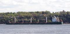 Blacky - IMO 9292149 (Jacques Trempe 3,260K hits - Merci-Thanks) Tags: stefoy quebec canada ship navire fleuve rive stlaurent stlawrence transportation vraquier bulker blacky