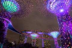 Gardens by the Bay, Singapure (martinscphoto) Tags: gardensbythebay singapure light night martinscphoto longexposure nikon d750