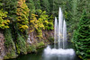 Water Fountain at the Butchart Gardens, British Columbia, Canada (takasphoto.com) Tags: apsc america brentwoodbay britishcolumbia butchartgardens canada color fallenleaves floraldisplaygarden flower flowers foliage fuji fujixt1 fujixt1fujifilm fujifilm fujinon fujinonlensxf18135mmf3556rlmoiswr fujinonxf18135mmf3556rlmoiswr green greenplants hoja japanesegarden jenniebutchart kingdomplantae leaf leaves lens lifestyle mirrorless mirrorlesscamera nature northamerica outdoor plantae robertpimbutchart thebutchartgardens theitaliangarden therossfountain tree trees vancouverisland verde victoria xmount xt1 xtranscmosii xtransii xf18135 みどり カナダ フジノン フジフィルム ブッチャート・ガーデン ミラーレス ライフスタイル 北米 庭園 植物 植物園 紅葉 緑 緑色 翠 自然 落葉 葉