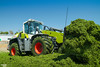CLAAS TORION 1914 CMATIC wheel loader (martin_king.photo) Tags: springwork springwork2018 silage silage2018 brandnew new claastorion1914 claas claastorion wheelloader inaction action first today michelin tires big strong silo outdoor claasworldwide biggest strongest huge machine sky martin king photo agriculture machinery machines tschechische republik powerfull power dynastyphotography lukaskralphotocz agricultural great day czechrepublic fans work place tschechischerepublik martinkingphoto welovefarming working modern landwirtschaft colorful colors blue photogoraphy photographer canon tractor love farming daily onwheels farm skyline allclaaseverything claasfans worker