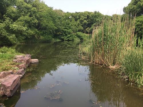 Meiyuan Scenic Area