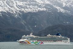 MS Westerdam - 7 Day Alaska May 2018 - Glacier Bay-87.jpg (Cindy Andrie) Tags: alaska hollandamerica d800 nature britishcolumbia beach victoriabc westerdam glacierbay landscape nikon cindyandrie canada andrie glaciers nikond800 cindy