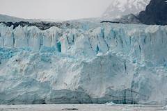MS Westerdam - 7 Day Alaska May 2018 - Glacier Bay-180.jpg (Cindy Andrie) Tags: alaska hollandamerica d800 nature britishcolumbia beach victoriabc westerdam glacierbay landscape nikon cindyandrie canada andrie glaciers nikond800 cindy