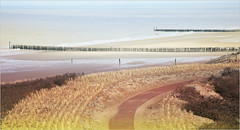Dunes, mer du Nord et plage, Dombourg, Walcheren, Zeelande, Nederland (claude lina) Tags: claudelina paysbas nederland hollande zélande zeeland dombourg walcheren plage beach merdunord noordzee dunes sable