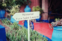 YSL Gardens (shednight) Tags: yves saint laurent morocco portra