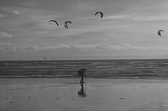 20/12/2015 Lone Photographer - Porthcawl (Kane the Lurcher) Tags: beach shore marine wave seashore seaside porthcawl wales coast photographer kitesailing blackwhite parasailing people