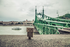 Danbo in Liberty bridge (Vagelis Pikoulas) Tags: liberty bridge budapest hungary travel photography green canon 6d tokina 2470mm landscape toy danbo city cityscape september autumn 2017
